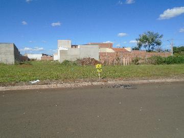 Alugar Terrenos / Padrão em Sertãozinho. apenas R$ 87.000,00