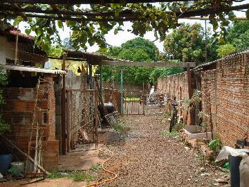 Comprar Casas / Padrão em Sertãozinho R$ 283.500,00 - Foto 3