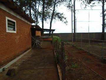 Comprar Rurais / Chácara em Sertãozinho R$ 1.000.000,00 - Foto 8