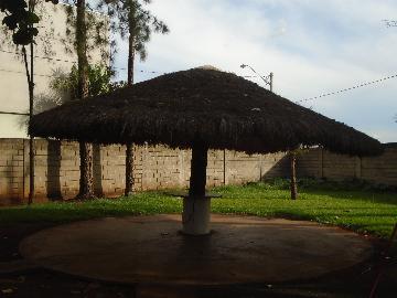 Comprar Rurais / Chácara em Sertãozinho R$ 1.000.000,00 - Foto 10
