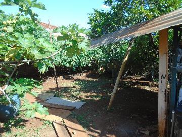 Comprar Casas / Padrão em Sertãozinho R$ 630.000,00 - Foto 4