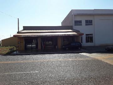 Alugar Comerciais / Salão em Pradópolis. apenas R$ 500.000,00