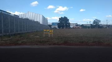 Alugar Terrenos / Padrão em Sertãozinho. apenas R$ 1.600,00