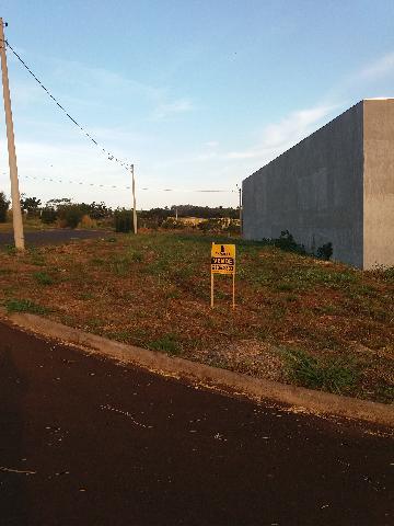 Alugar Terrenos / Padrão em Sertãozinho. apenas R$ 100.000,00