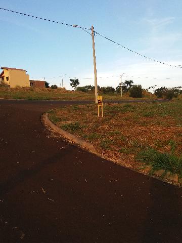 Comprar Terrenos / Padrão em Sertãozinho R$ 100.000,00 - Foto 2