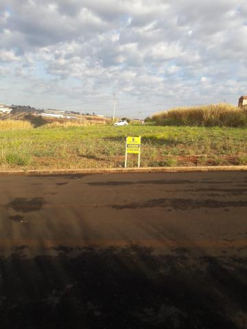 Alugar Terrenos / Padrão em Sertãozinho. apenas R$ 80.000,00