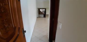 Alugar Casas / Padrão em Sertãozinho R$ 1.650,00 - Foto 4