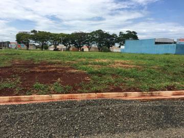 Alugar Terrenos / Padrão em Sertãozinho. apenas R$ 193.000,00