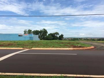 Alugar Terrenos / Padrão em Sertãozinho. apenas R$ 235.000,00