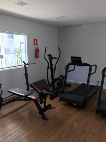 Alugar Apartamentos / Padrão em Sertãozinho R$ 600,00 - Foto 35