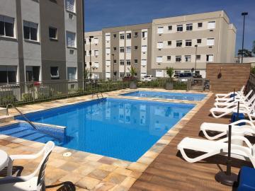 Alugar Apartamentos / Padrão em Sertãozinho R$ 600,00 - Foto 47