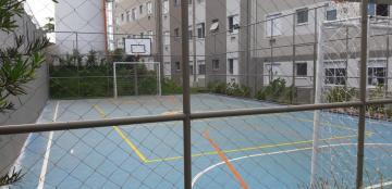 Alugar Apartamentos / Padrão em Sertãozinho R$ 650,00 - Foto 9