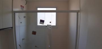 Alugar Apartamentos / Padrão em Sertãozinho R$ 650,00 - Foto 18