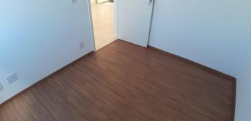Alugar Apartamentos / Padrão em Sertãozinho R$ 650,00 - Foto 19