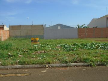 Alugar Terrenos / Padrão em Sertãozinho. apenas R$ 112.000,00