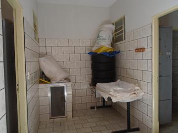 Comprar Comerciais / Salão em Sertãozinho R$ 500.000,00 - Foto 10