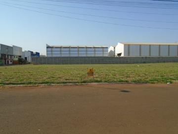 Alugar Terrenos / Padrão em Sertãozinho. apenas R$ 300.000,00