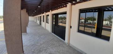 Alugar Comerciais / Sala em Sertãozinho R$ 2.500,00 - Foto 7