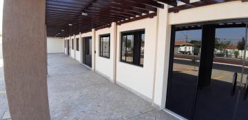 Alugar Comerciais / Sala em Sertãozinho R$ 2.500,00 - Foto 8
