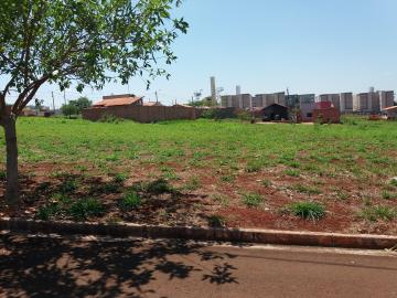 Alugar Terrenos / Padrão em Sertãozinho. apenas R$ 165.000,00