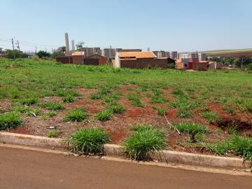 Alugar Terrenos / Padrão em Sertãozinho. apenas R$ 146.000,00