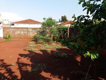 Comprar Casas / Padrão em Sertãozinho R$ 950.000,00 - Foto 13