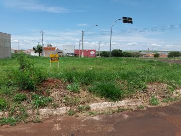 Alugar Terrenos / Padrão em Sertãozinho. apenas R$ 190.000,00