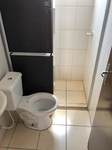 Alugar Apartamentos / Padrão em Sertãozinho R$ 600,00 - Foto 11