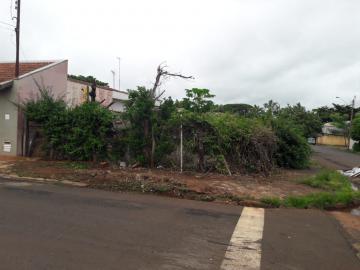 Comprar Terrenos / Padrão em Sertãozinho. apenas R$ 95.000,00