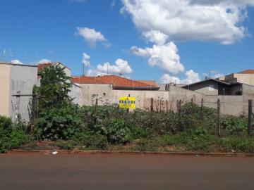 Comprar Terrenos / Padrão em Sertãozinho. apenas R$ 100.000,00