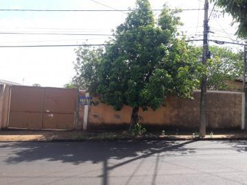 Terrenos / Padrão em Sertãozinho , Comprar por R$140.000,00