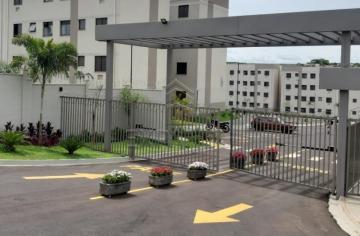 Apartamentos / Padrão em Sertãozinho Alugar por R$600,00