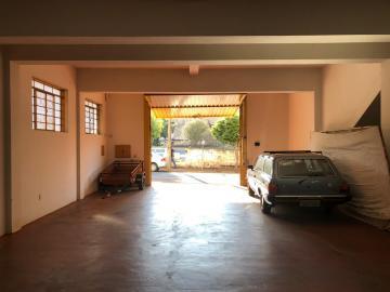 Alugar Comerciais / Barracão em Sertãozinho R$ 3.500,00 - Foto 2