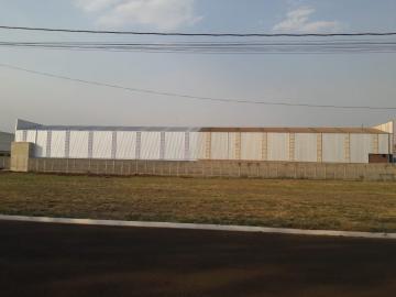 Alugar Terrenos / Área em Sertãozinho. apenas R$ 290.000,00