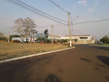 Comprar Terrenos / Industriais em Sertãozinho R$ 350.000,00 - Foto 2