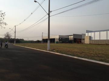 Comprar Terrenos / Industriais em Sertãozinho R$ 350.000,00 - Foto 3