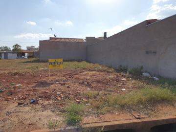 Terrenos / Padrão em Sertãozinho , Comprar por R$95.000,00