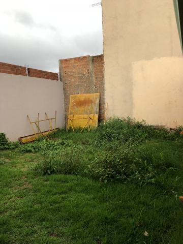 Alugar Casas / Padrão em Sertãozinho R$ 1.050,00 - Foto 13