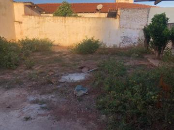 Alugar Casas / Padrão em Sertãozinho R$ 1.500,00 - Foto 32