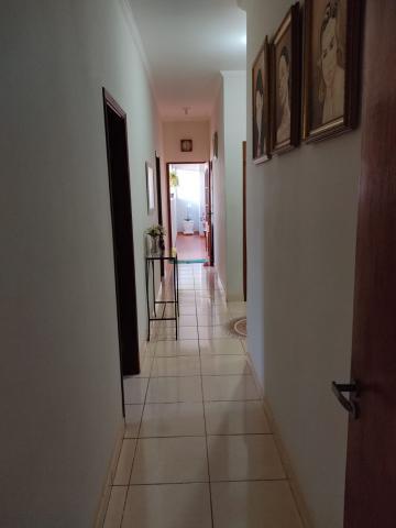Comprar Casas / Padrão em Sertãozinho R$ 475.000,00 - Foto 8