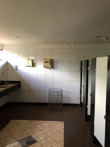 Alugar Comerciais / Sala em Sertãozinho R$ 4.000,00 - Foto 7