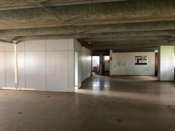 Alugar Comerciais / Sala em Sertãozinho R$ 4.000,00 - Foto 9