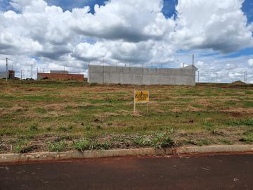 Comprar Terrenos / Padrão em Cruz das Posses R$ 77.000,00 - Foto 2