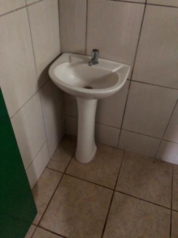 Alugar Casas / Padrão em Sertãozinho R$ 800,00 - Foto 14
