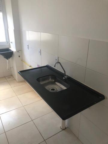 Alugar Apartamentos / Padrão em Sertãozinho R$ 550,00 - Foto 4