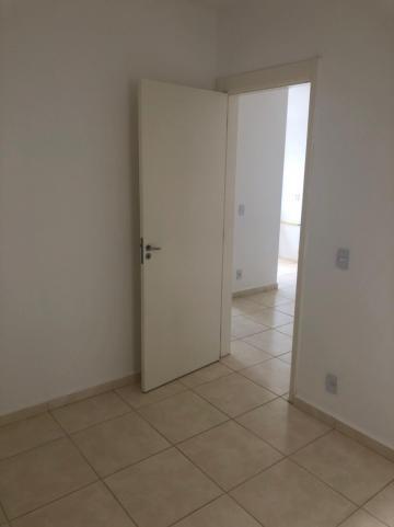 Alugar Apartamentos / Padrão em Sertãozinho R$ 550,00 - Foto 7