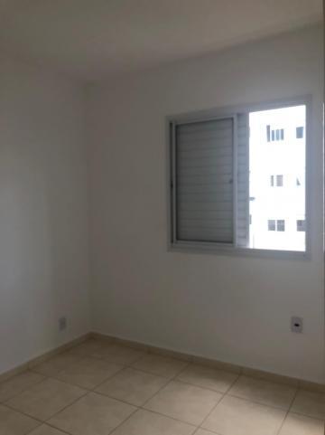 Alugar Apartamentos / Padrão em Sertãozinho R$ 550,00 - Foto 10