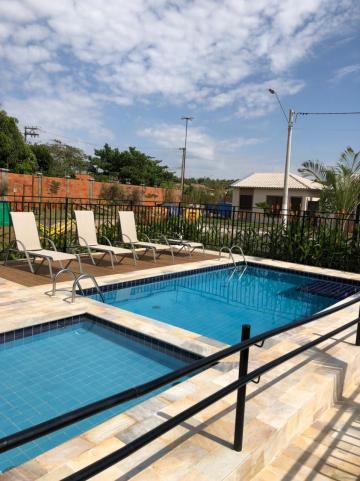 Alugar Casas / Padrão em Sertãozinho R$ 850,00 - Foto 15