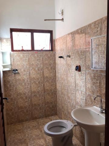 Alugar Casas / Padrão em Sertãozinho R$ 600,00 - Foto 9