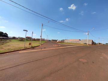Comprar Terrenos / Padrão em Cruz das Posses R$ 133.000,00 - Foto 2